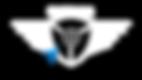 DRONE 9JA - 2020 logo (02) MERGED.png