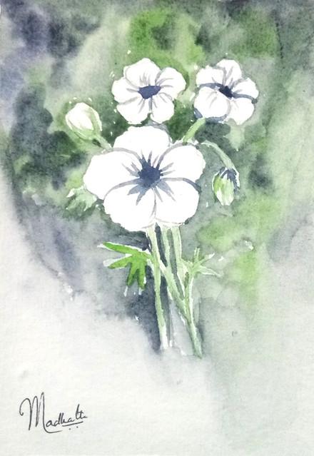 Wet n Wet Flowers