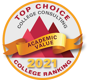 Academic value 2021 logo.png