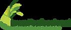 IPLCA Logo.png
