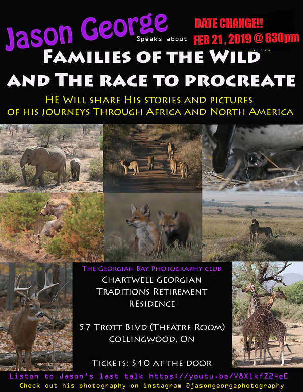 Families of the Wild.jpg
