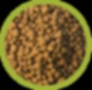 Nutre y F editable-27.png