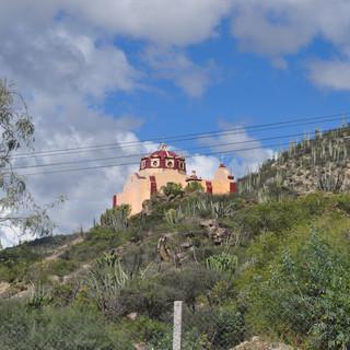 Col_Centro,_Zapotitlán_Salinas,_Pue.,_Me
