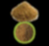 Nutre y F editable-38.png