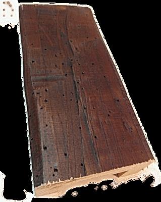 Azuela-Carcoma Nogal Oscuro