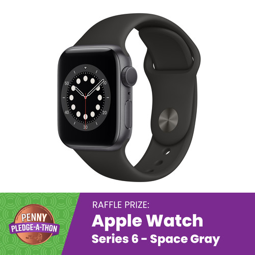 Series 6 Apple Watch in Space Gray