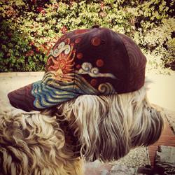 Jorgor's hat
