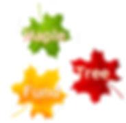 Maple Tree Fund logo.jpg