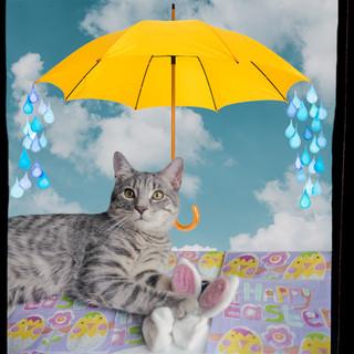 Kitty Cat Calendar