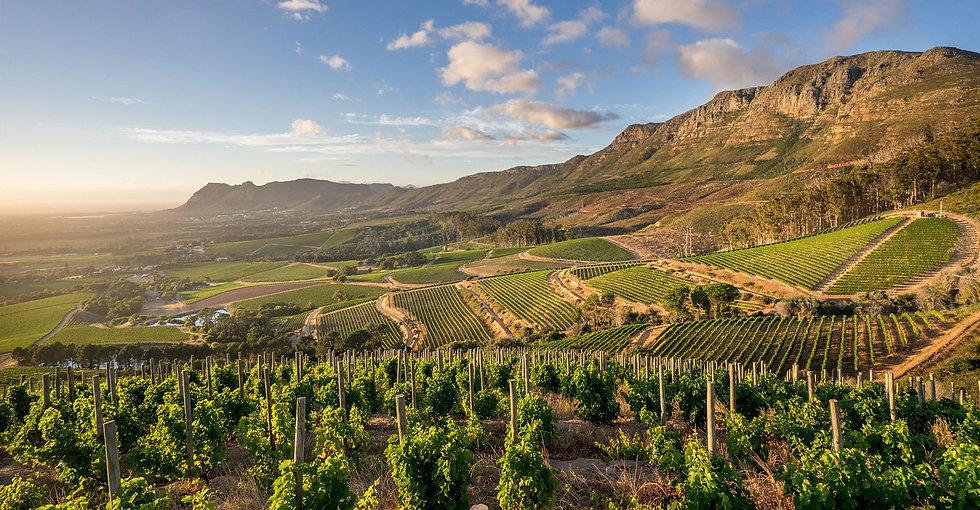 Grand-Residence-Constantia-Capetown.jpg