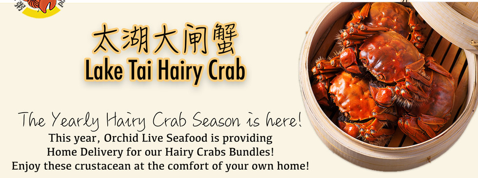 Hairy Crab Home Delivery