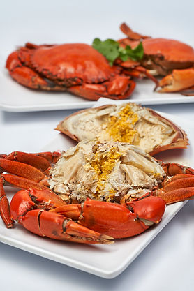 Orchid_Live_Seafood 0001.jpg