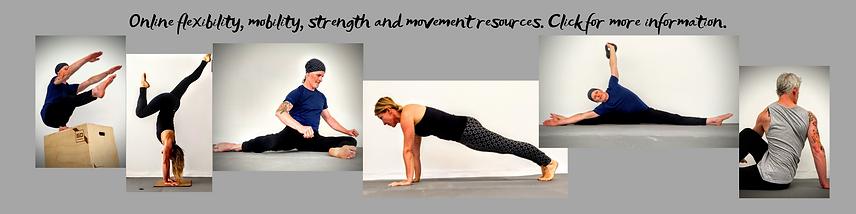 Online flexibility, mobility, strength a