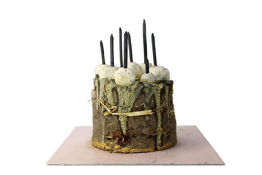2014 cake 20x20x17cm soil, plants, clay,
