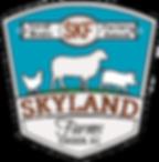 skyland-logo-no-background.png