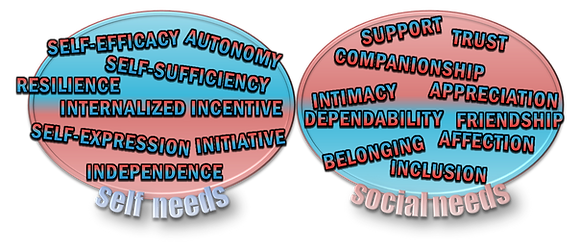SELF-NEEDS & SOCIAL-NEEDS.png