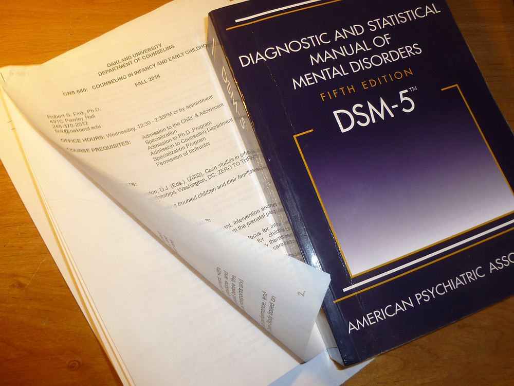 DSM-5 paperweight.JPG