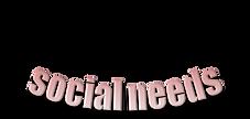 social needs.png
