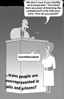 Blind Injustice to trans violence.png