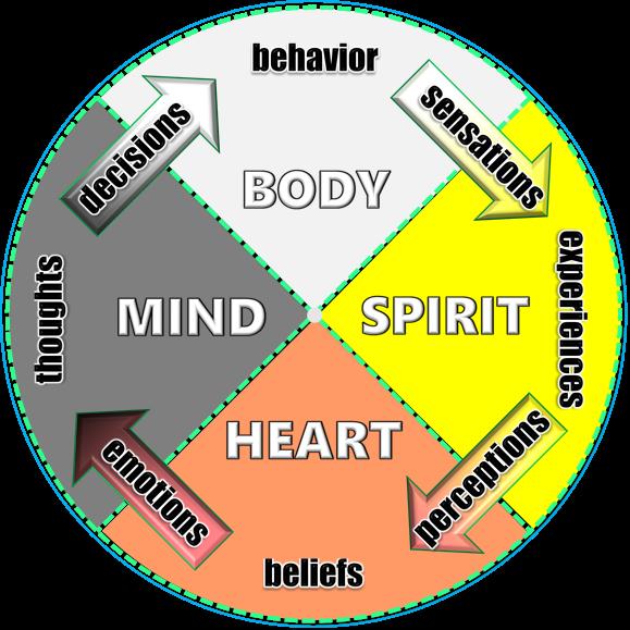 humanity wheel (b).png