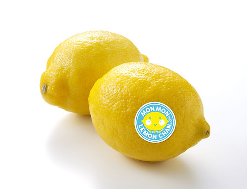 lemon_web_2.jpg