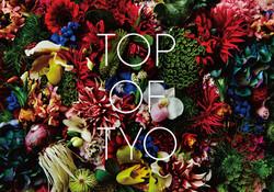 TOP OF TYO