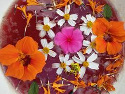 blood flower limpia.jpg