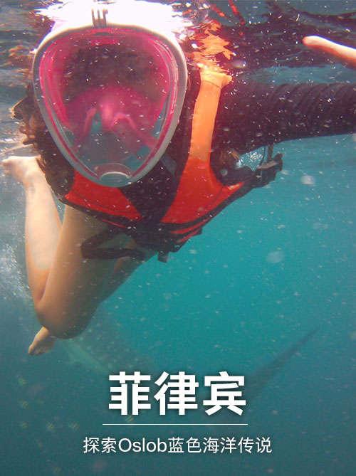 菲律宾之旅(上):探索Oslob蓝色海洋传说——鲸鲨