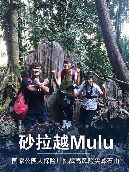 砂拉越Mulu国家公园大探险!挑战高风险尖峰石山