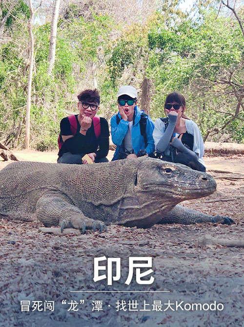 印尼探险之旅(下):Komodo 岛找世上最大蜥蜴