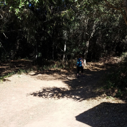 Start of hiking!
