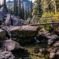 Scenic Spot