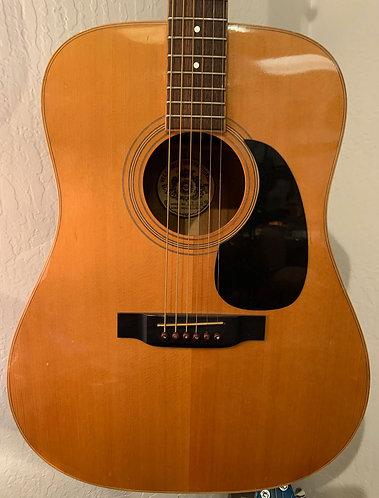 Vega Acoustic body
