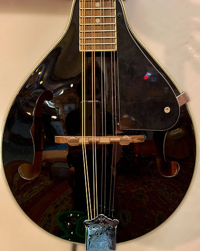 Mandolin body