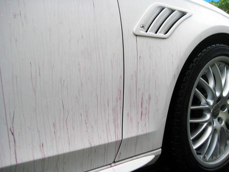 Желтые точки на кузове автомобиля - что это и насколько опасно?