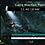 Thumbnail: Rocky Mountain Explorer V1 for MainStage 3