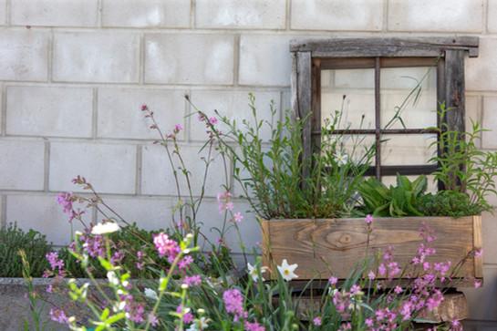 Balcone fiorito, Verscio