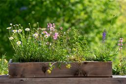 Vaso di legno fiorito