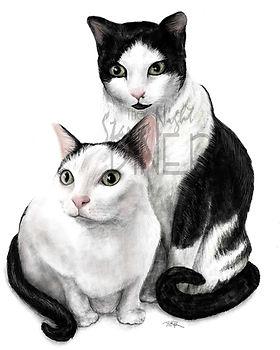cats_wm.jpg