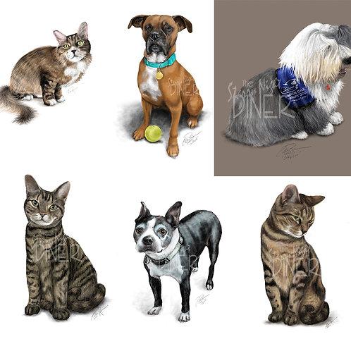 Custom Pet Portrait -  Full Body