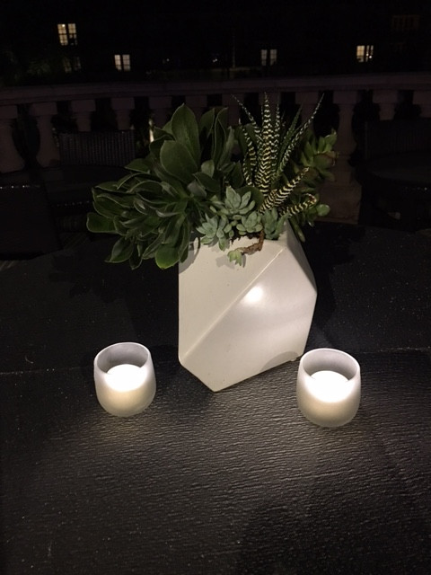 White Geometric w Succulents 1.JPG