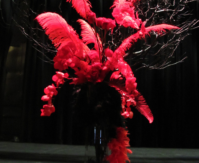Red Black Plumes and Boas Bar Stage .jpg