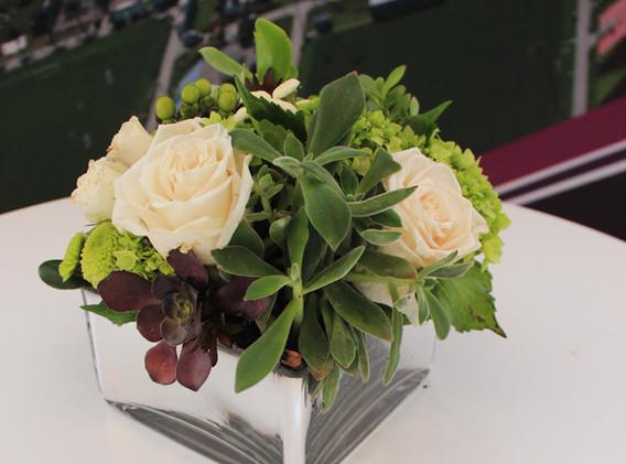 Succulents w White Roses in Square Vase.