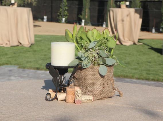 Winery Centerpiece w Succulent and Burla