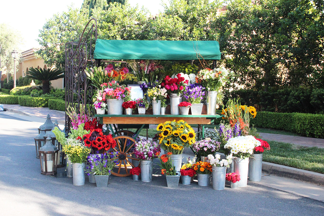 Flower Cart Full Display Only (4).jpg
