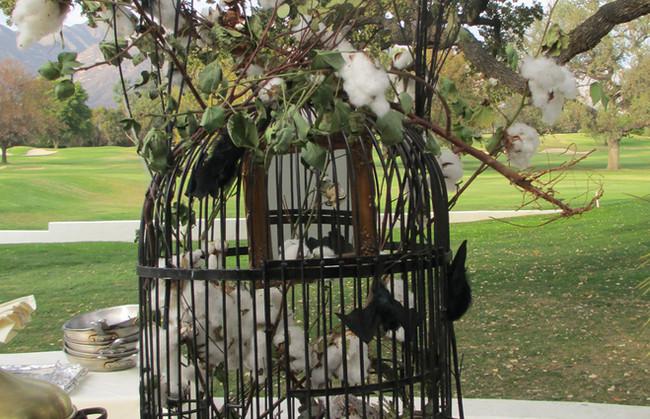 Gigantic Bird Cage for buffet 1.jpg