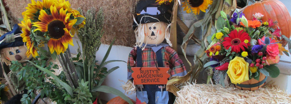 Scarecrow Vignette