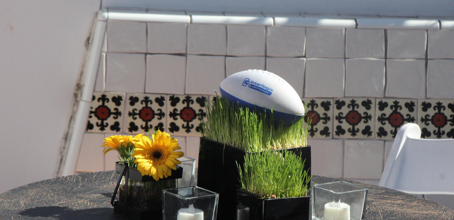 Wheat+Grass+and+Football+(6).jpg