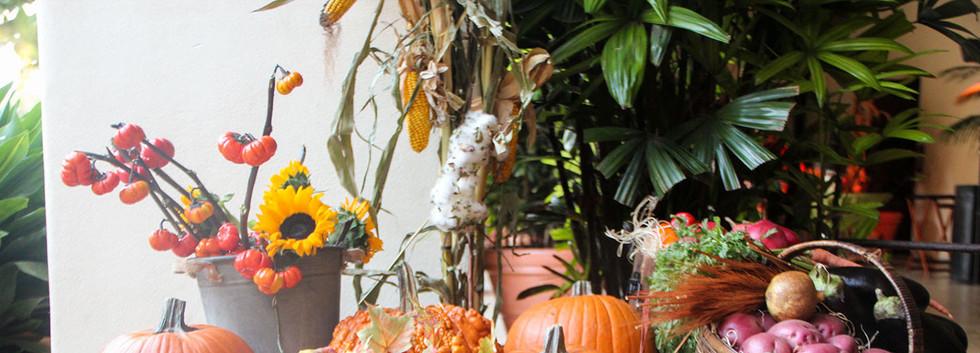 Harvest Cart (5).jpg
