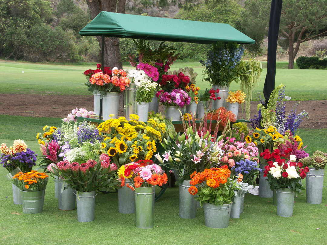 Flower Cart Full Display Only (1).JPG